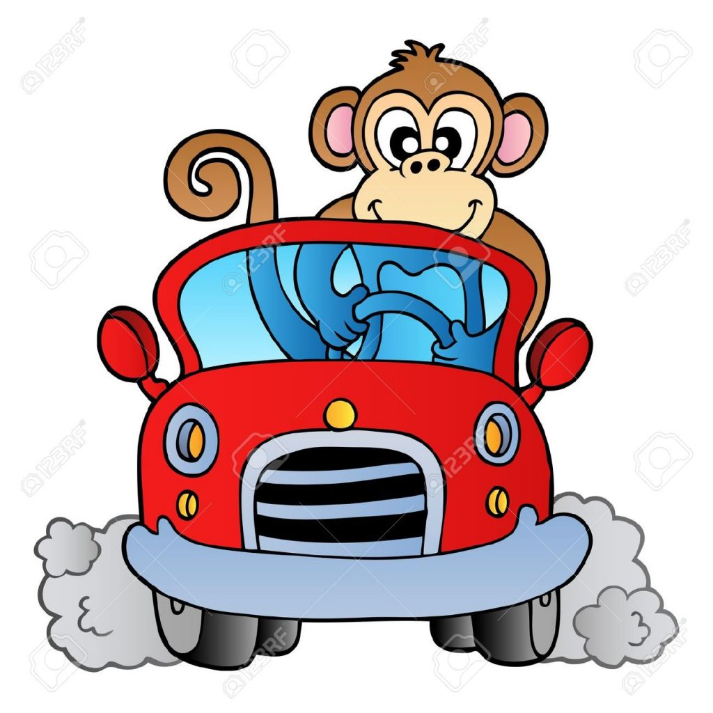 8433519-Monkey-in-car-Stock-Vector-cartoon