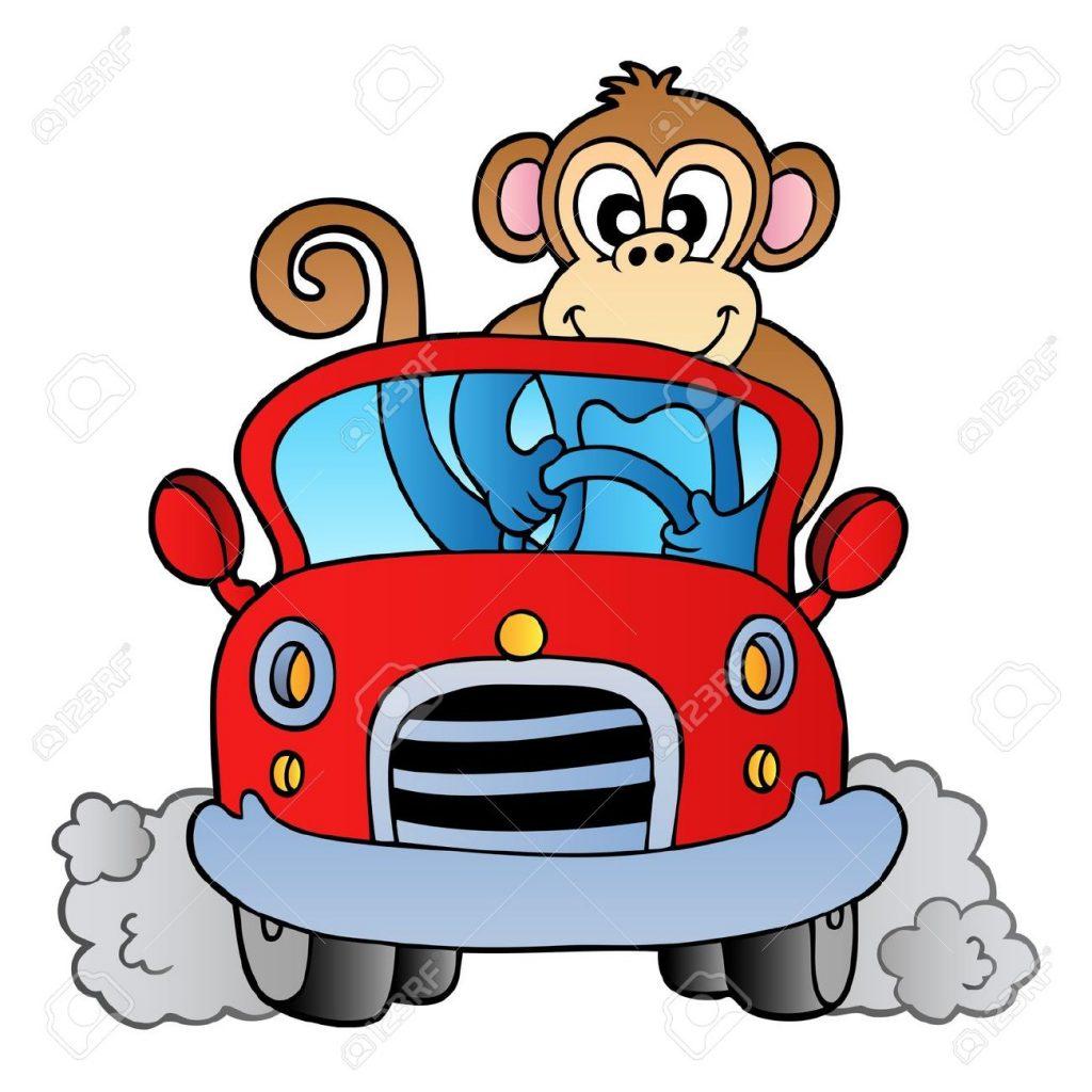 8433519-Monkey-in-car-Stock-Vector-cartoon
