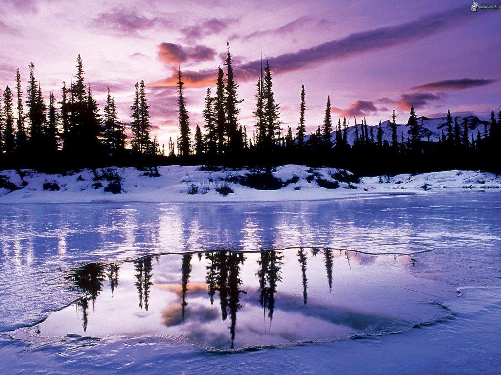 lago-ghiacciato-siluette-di-alberi-cielo-viola-217918