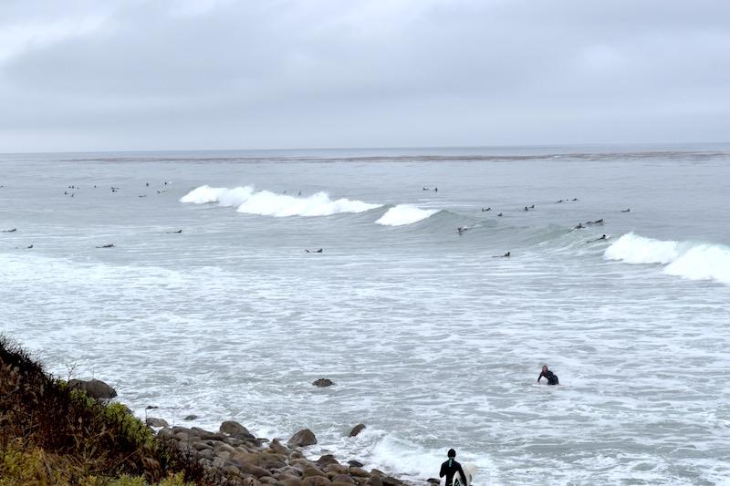 Malibù Surf
