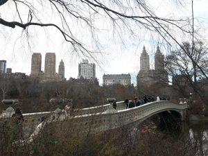 Central Park View dal ponte