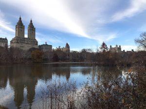 Central Park veduta laghetto