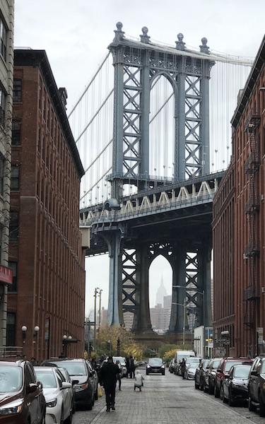 Dumbo NY