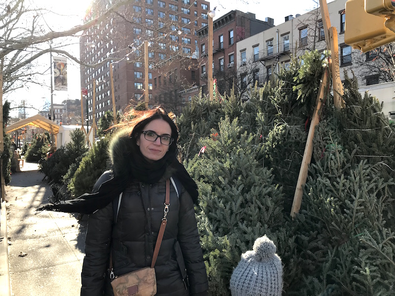 NY Acquisto Alberi di Natale