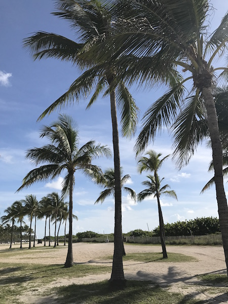Miami lungomare